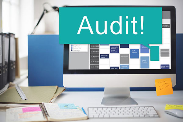 IT Audit Services